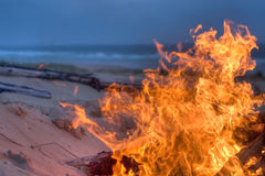 Beach campfire Stock Images