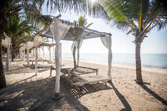 Beach canopy among palms by Indian Ocean Stock Image