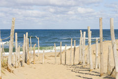 Beach at Cape cod. Sandy beach and ocean at Cape Cod royalty free stock photos