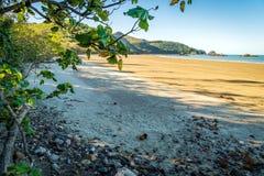 Beach in Cape Hillsborough national park, Queensland, Australia stock photo