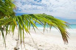 beach caribbean Стоковые Изображения
