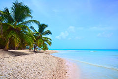 Beach of the Caribbean Sea Stock Image