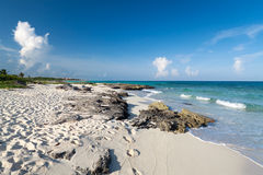 Beach of the Caribbean Sea in Mexico. Tropical beach of the Caribbean Sea in Mexico Royalty Free Stock Photography