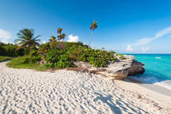 Beach of the Caribbean Sea in Mexico Stock Photo
