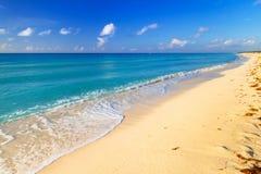 Beach at Caribbean sea in Mexico. Beach at Caribbean sea in Playa del Carmen, Mexico Royalty Free Stock Image