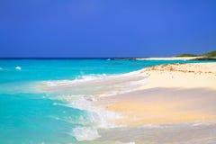 Beach at Caribbean sea in Mexico. Beach at Caribbean sea in Playa del Carmen, Mexico Stock Photos