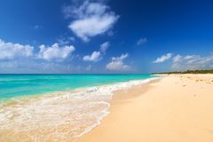 Beach at Caribbean sea in Mexico. Beach at Caribbean sea in Playa del Carmen, Mexico Royalty Free Stock Photography