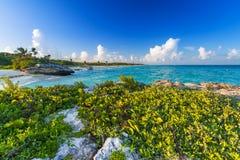 Beach at Caribbean sea in Playa del Carmen. Mexico Royalty Free Stock Photos