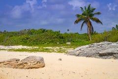Beach at Caribbean sea in Playa del Carmen. Mexico Royalty Free Stock Photography