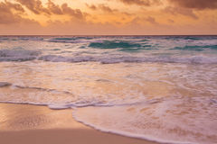 Beach of the Caribbean Sea Stock Photography
