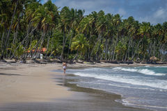 Beach of Carneiros, Tamandar�-Pernambuco. Tamandar� is a coastal municipality located roughly 103 km (64 mi) south of Recife, the capital city of the stock image