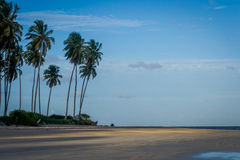 Beach of Carneiros, Tamandar�-Pernambuco. Tamandar� is a coastal municipality located roughly 103 km (64 mi) south of Recife, the capital city of the royalty free stock images