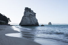 Beach of Cathedral Cove, New Zealand Stock Images