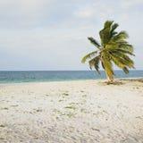Beach of Cayo Sabinal Stock Photography