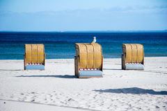 Beach chair Stock Images