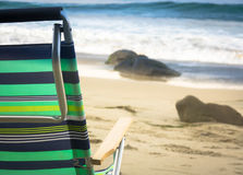 Beach Chair By the Ocean royalty free stock images