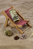 Beach chair with piggy bank and dollars Stock Images