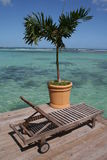 Beach chair under a palm tree. In Boca Chica Stock Images