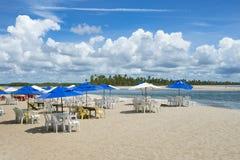 Beach Chairs Bahia Island Nordeste Brazil Stock Images