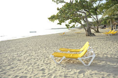 Beach chairs on the beach. A shot of a pair of yellow beach chairs on a tropical Resort Stock Photos