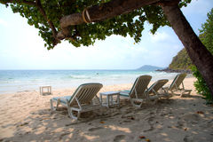 Beach chairs and coconut palm trees. Stock Images