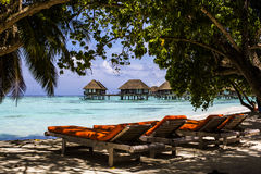 Beach chairs in shade on sandy seashore, Maldives Royalty Free Stock Photography