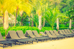 Beach chairs on tropical white sand beach . ( Filtered image pro Stock Photo