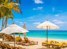 Beach chairs with umbrella at Maldives island, white sandy beach Stock Photography