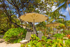 Beach chairs under a thatched roof in the tropics Royalty Free Stock Photo