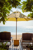 Beach chairs under tree. Or umbrella shade by the ocean environments in sunny day royalty free stock photography