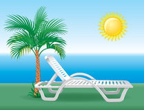 Beach chaise longue with tropical palm tree Royalty Free Stock Photography
