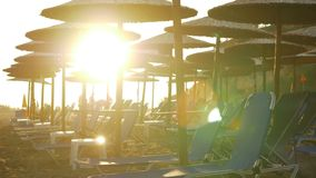 Beach with chaise longues in warm golden sun light. Resort area with empty chaise longues and straw umbrellas in the bright warm light of golden sun, people in stock video footage