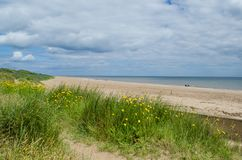 Chapel Point beach. Beach at Chapel Point near Skegness on the Lincolnshire coast Royalty Free Stock Photo