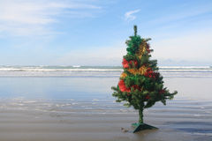 Beach Christmas. A decorated Christmas tree on a beach in New Zealand royalty free stock image