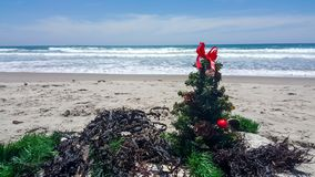Christmas tree ornaments and decorations at the beach Royalty Free Stock Photo