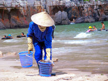 The beach is clean. Cat Ba, Island Cat Ba, Vietnam - June 2, 2011: Vietnamese woman scavenges on the public beach