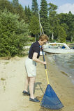 Beach cleaning stock image