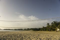 Net to play volleyball on the beach. Beach with a clear sky and a forest of palm trees on a par, main plane net of bolleyball stock images
