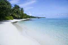 Beach with clear transparent water in maldives Stock Photo