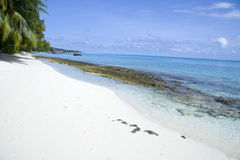 Beach with clear transparent water in maldives Stock Image