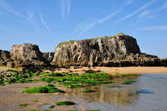 Beach and cliff at Quiberon in France Stock Images