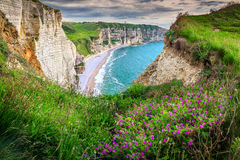 Beach and cliffs of Etretat with colorful spring flowers, France. Stunning summer sunset landscape with Atlantic ocean and magical flowers, Etretat, Normandy Royalty Free Stock Photography