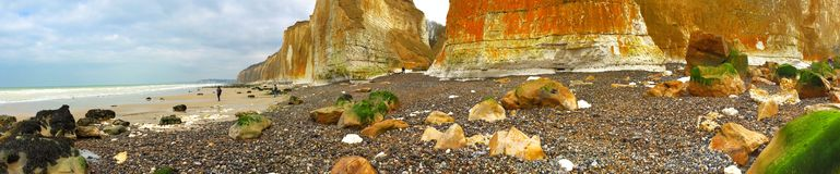 Beach and cliffs in winter Stock Photography