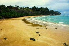 Beach with cloudy sky and lush forest royalty free stock image
