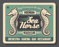 Sea horse beach club retro poster royalty free illustration
