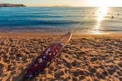 Beach coast with float in the Red Sea during sunrise. Beautiful beach coast with float in the Red Sea during sunrise, Egypt. Summer landscape. Travel holiday Royalty Free Stock Images