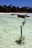 beach coastline and boat in  zanzibar Royalty Free Stock Photography