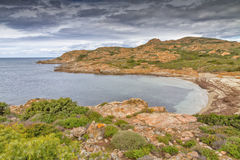 Beach and coastline in Corsica Royalty Free Stock Image