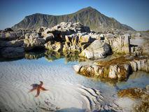 Beach, Coastline, Lofoten Royalty Free Stock Photography