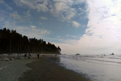 Beach coastline in the Olympic National Park, the Olympic Peninsula near Seattle stock images